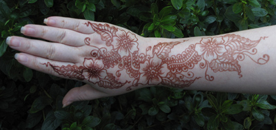 Henna Tattoos Ottawa on Henna Supplies   Henna Tattoo Kits  Henna Powder  Professional Mehndi